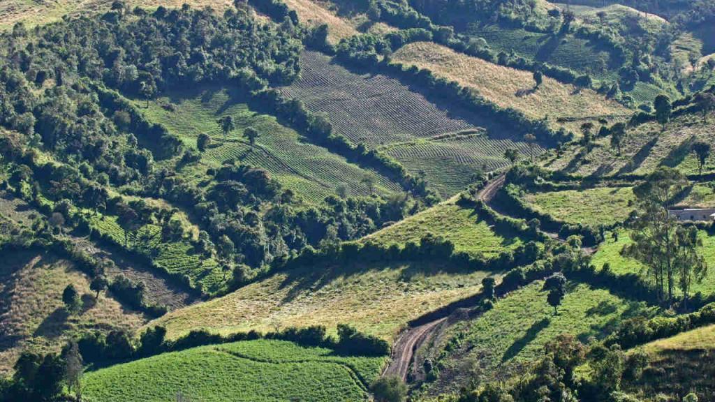 Imagen aérea de un paisaje.