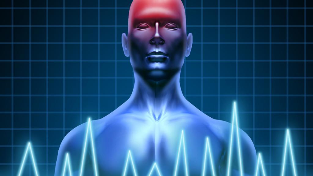 Gráficación del cuerpo humano y una lesión cerebrovascular