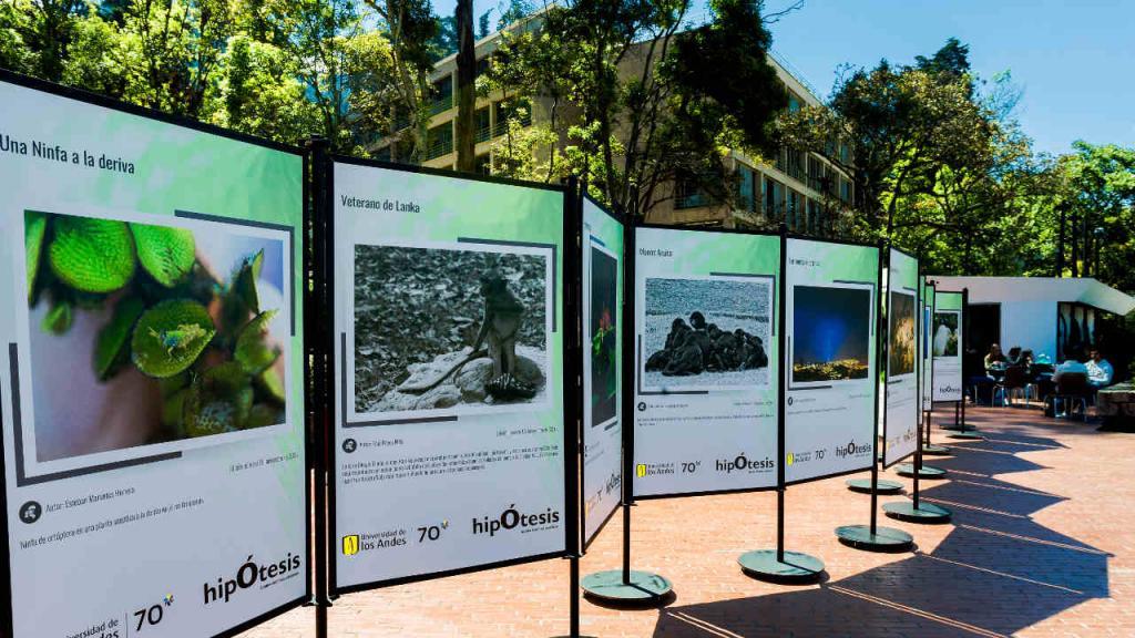 Imagen de la exposición, al aire libre, en el campus de la Universidad, en la plazoleta Lleras.