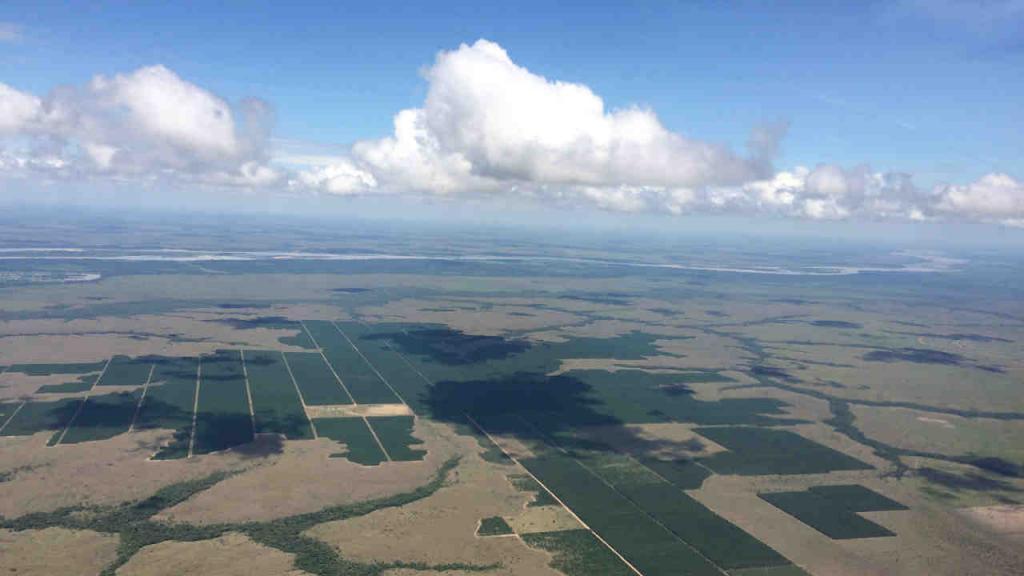 Vista aérea de de una zona de Vichada.