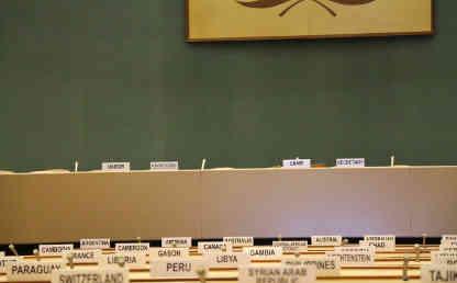 Image of the UN model