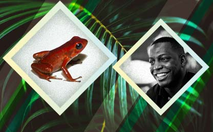 Picture of Pablo Palacios and the Andinobates victimatus frog