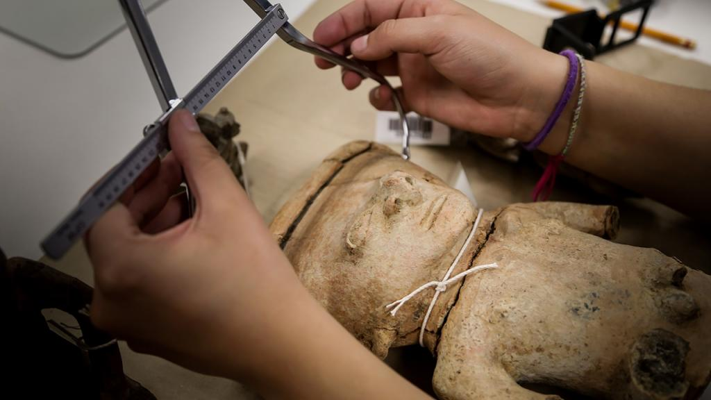 Imagen de manos midiendo pieza arqueológica con calibrador de ramas curvas.