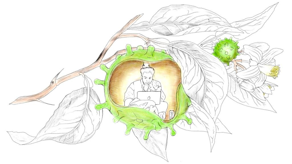Ilustración de señora viendo un computador en medio de hojas y el virus del covid
