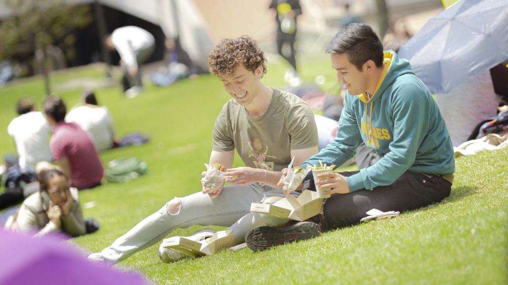 Dos estudiantes sentados en un prado
