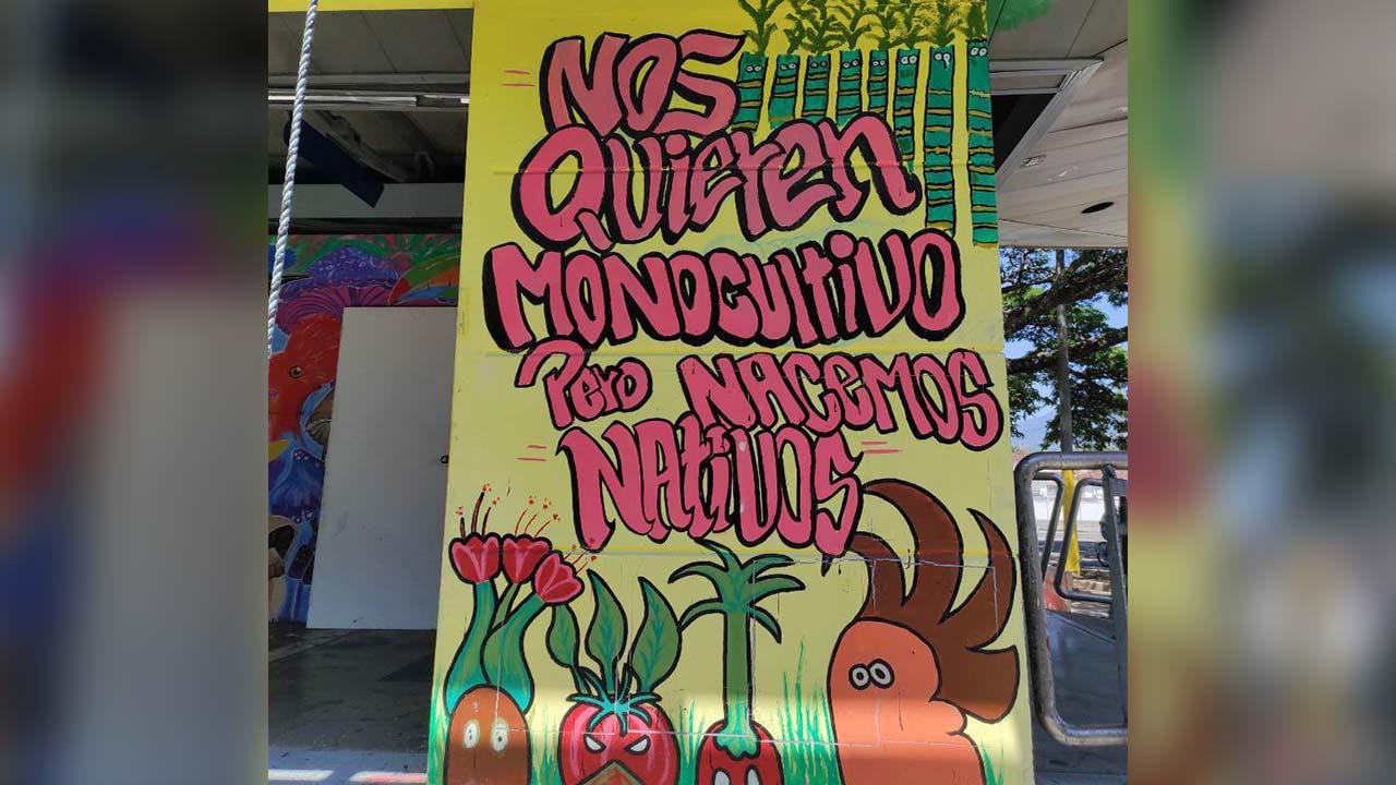 """Foto de un mensaje en una tienda que dice: """"Nos quieren monocultivo, pero nacimos nativos"""""""