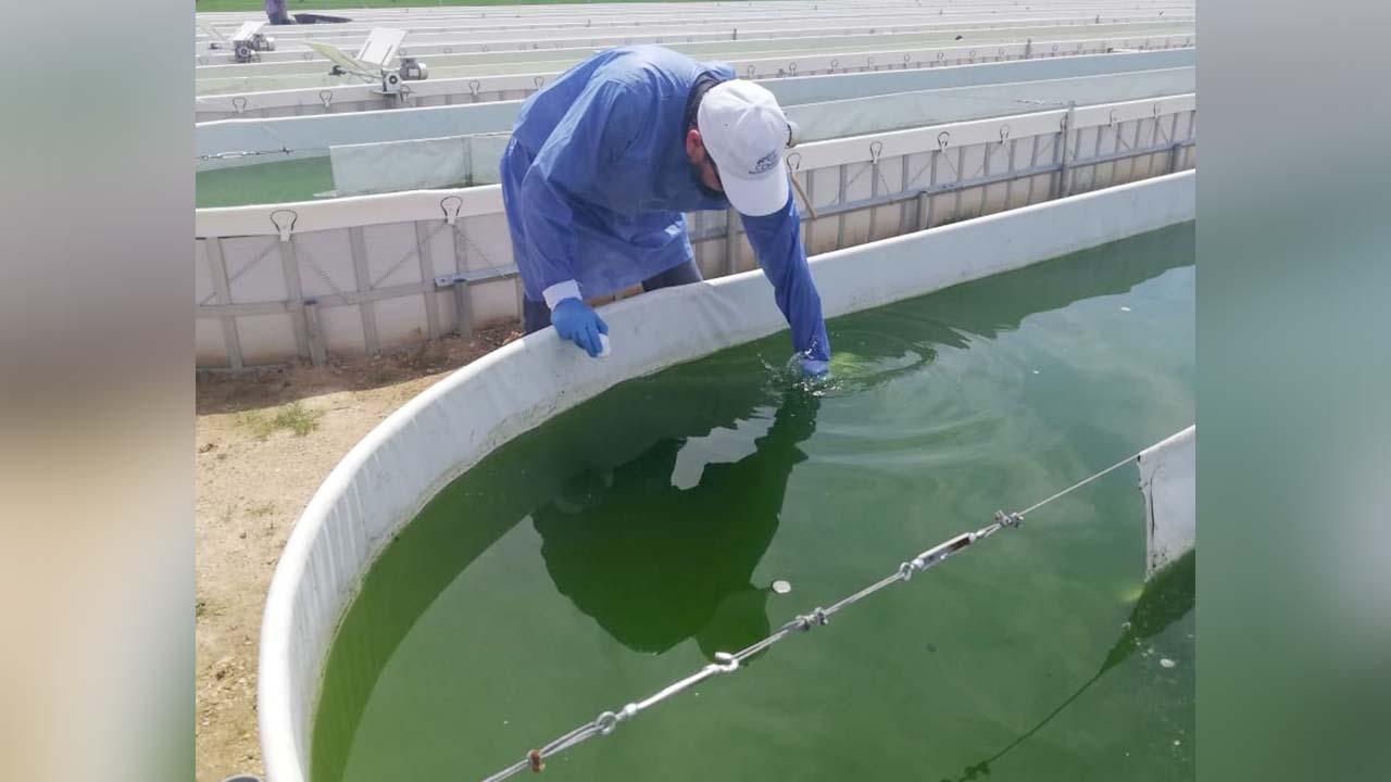 Foto de un técnico en la planta de Ficosucre