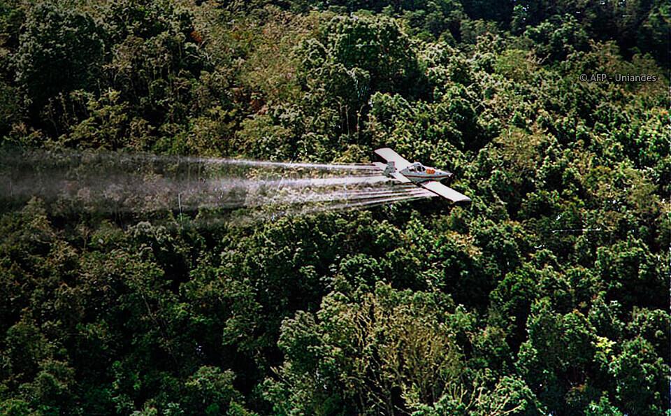 avioneta fumigando cultivos