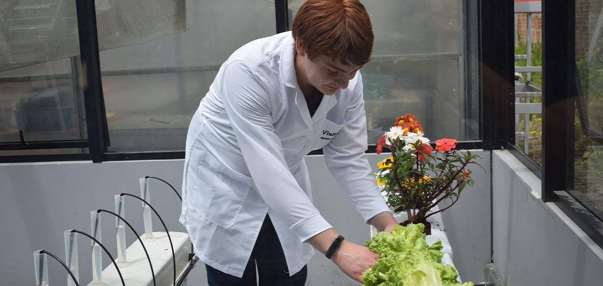 Foto banco de pruebas para optimizar cultivos hidropónicos