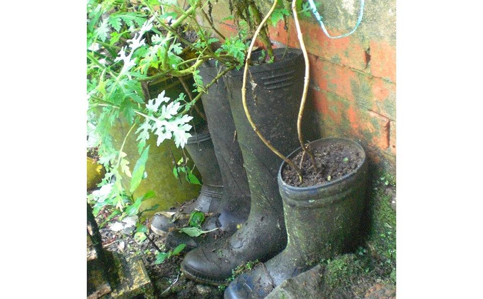 botas pantaneras usadas como materas para huertas caseras
