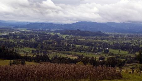 Panorámica campo rural