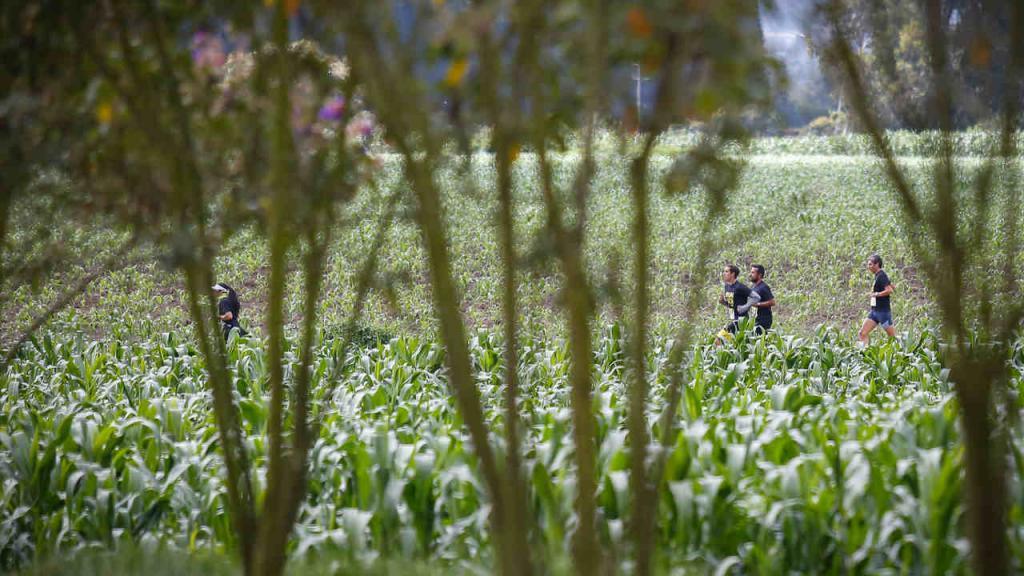 La Senek 2017 se corrió en la Hacienda El Noviciado, kilómetro 2.8, vía Cota-Chía