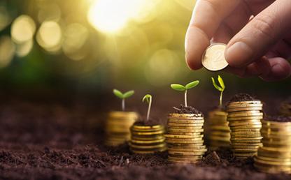 Foto montaje de monedas y plantas