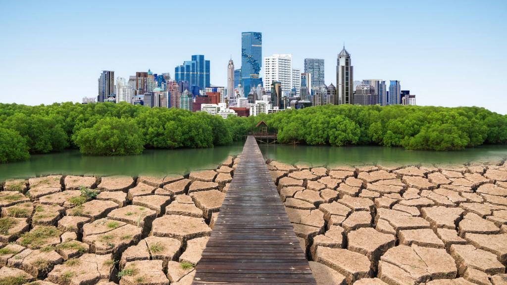 Un camino que pasa de un ecosistema árido a una ciudad verde.