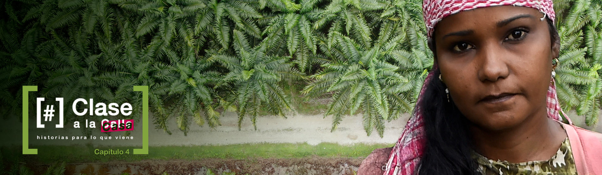 Mujer con cultivo de palmas