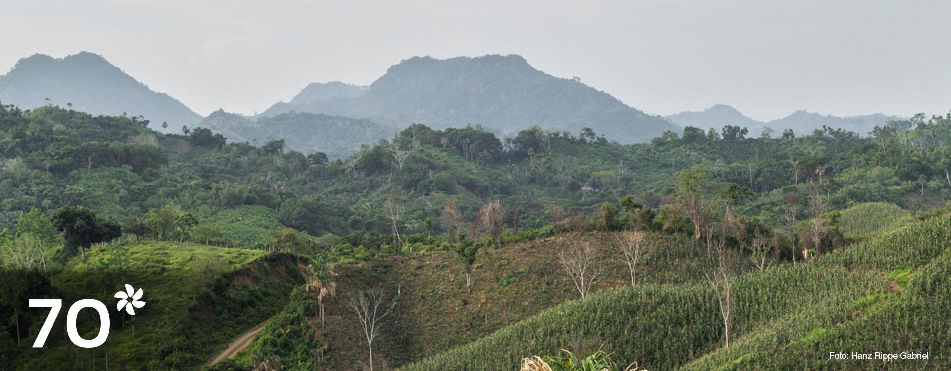 Imagen de campo colombiano. Foto: Hanz Rippe Gabriel.