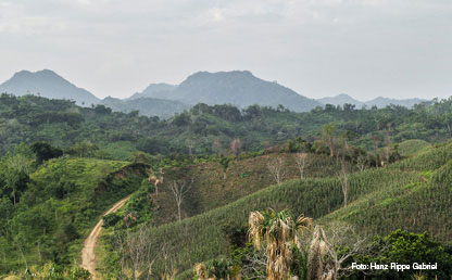 Picture of the Colombian countryside. Photo by Hanz Rippe Gabriel.