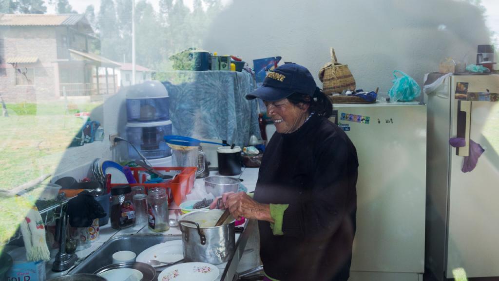 Mujer en la cocina, adelantando labores.