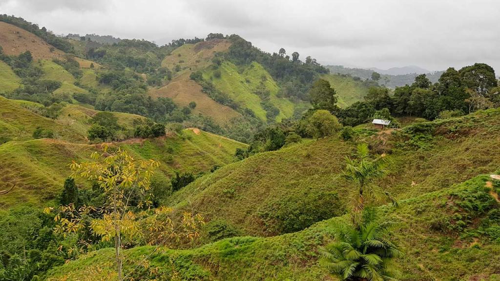 Foto de un paisaje en Colombia.