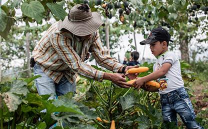 Rodrigo Ballesteros, agricultor dedicado al campo y a su familia