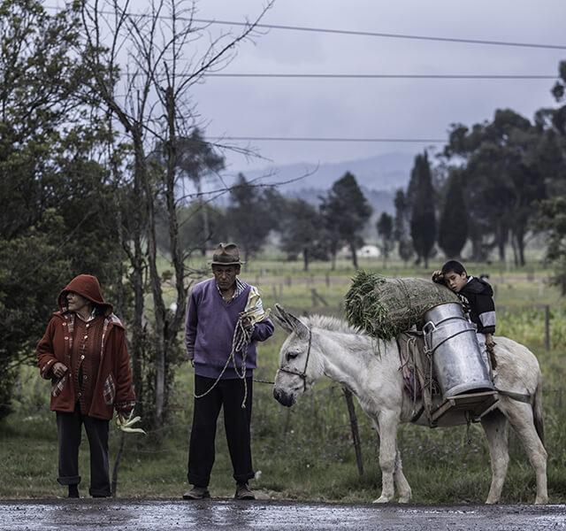 Encuesta Longitudinal Colombiana - ELCA