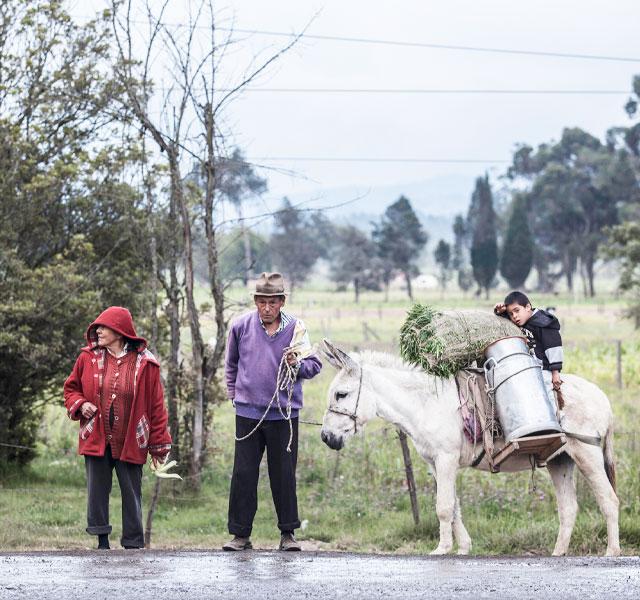 Dos campesinos junto a su mula que carga unas cantinas y un niño.