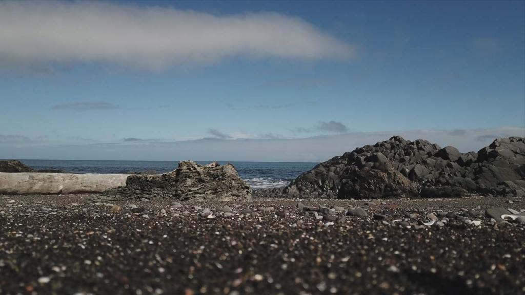 Área costera aledaña al Morro El Vilcún, Chile. Foto: Andrés Burbano.