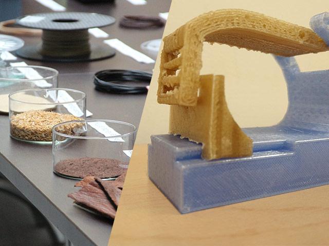 Composición fotográfica de residuos naturales que sirven para el diseño y manufactura de dispositivos impresos en 3D.