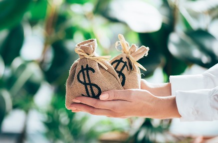 Imagen de manos sosteniendo bolsas con dinero
