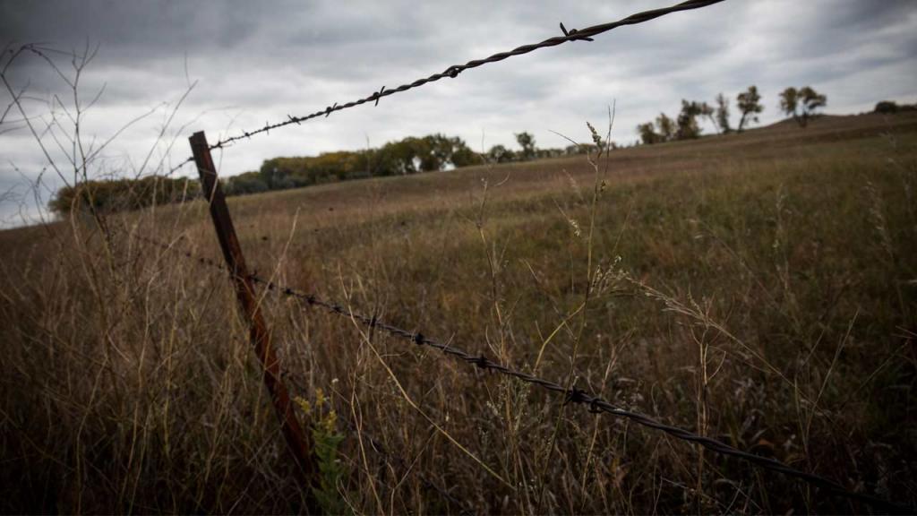 Ordenamiento y formalización de tierras