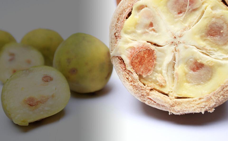foto de fruta