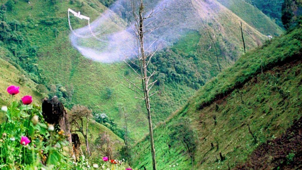 Avioneta fumigando sobre cultivos
