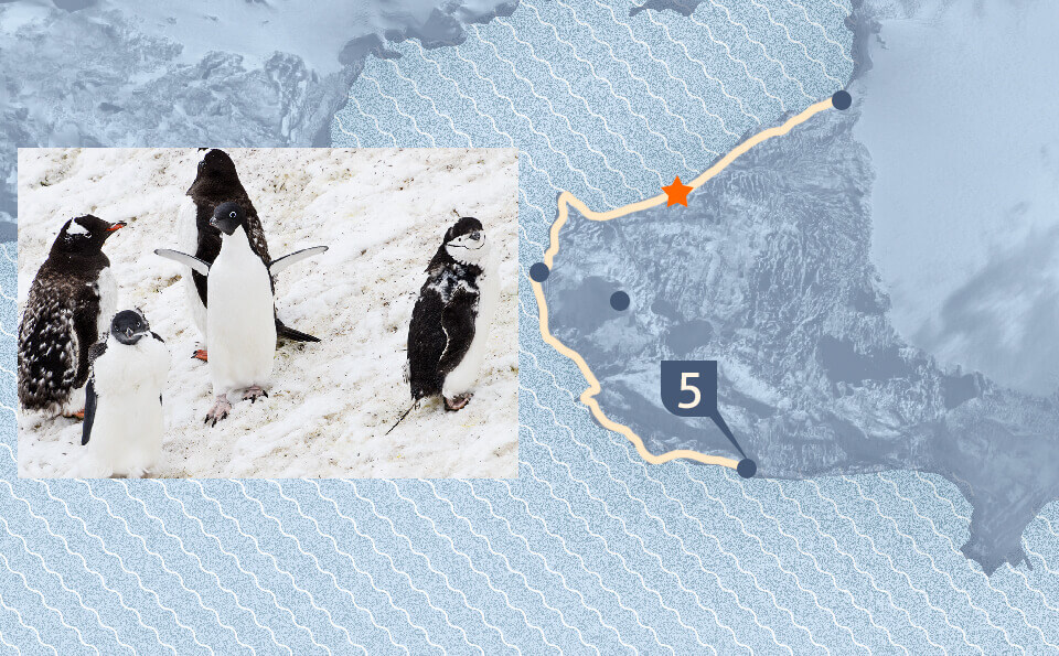 Graphic with map indicating the point of the photo that accompanies the image where you see three types of penguins in the snow