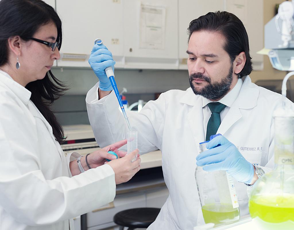 Imagen detallada de las microalgas, organismos unicelulares con gran potencial para descontaminación del agua.