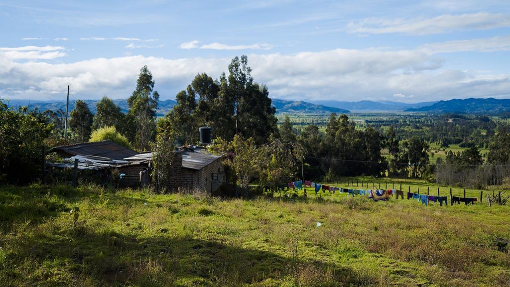 Imagen de una casa en territorio rural