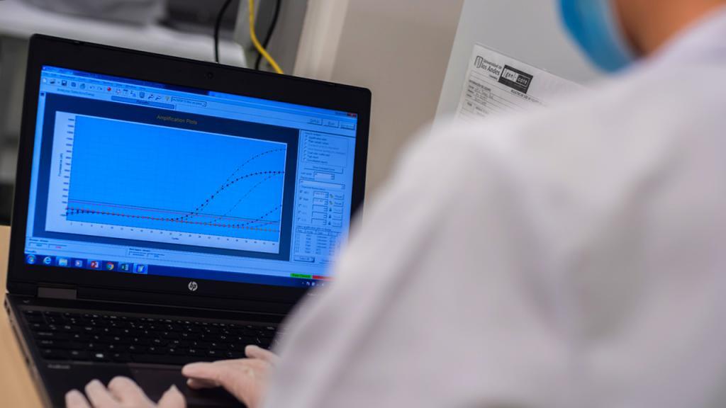 pruebas masivas de coronavirus