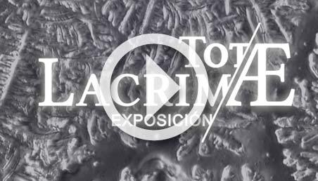 Imagen microscópica de una lágrima