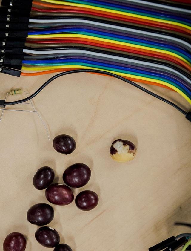 8 fríjoles y unos cables