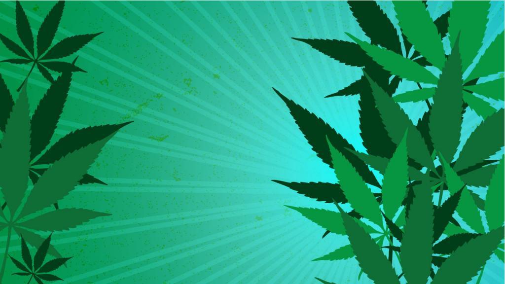 Marihuana Medicinal, Mitos Y Realidades