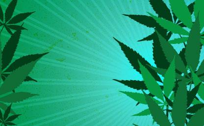 Gráficas con dibujos de mata de marihuana