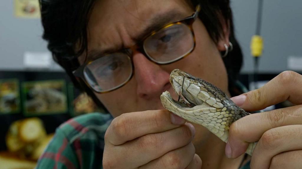 Estudiante con una serpiente en la mano