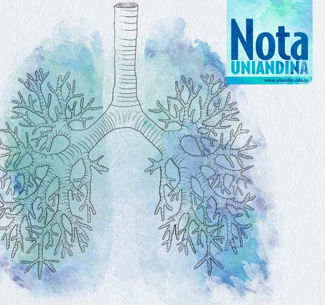 Portada de la Nota Uniandina 55. Ilustración de un pulmón en acuarela.