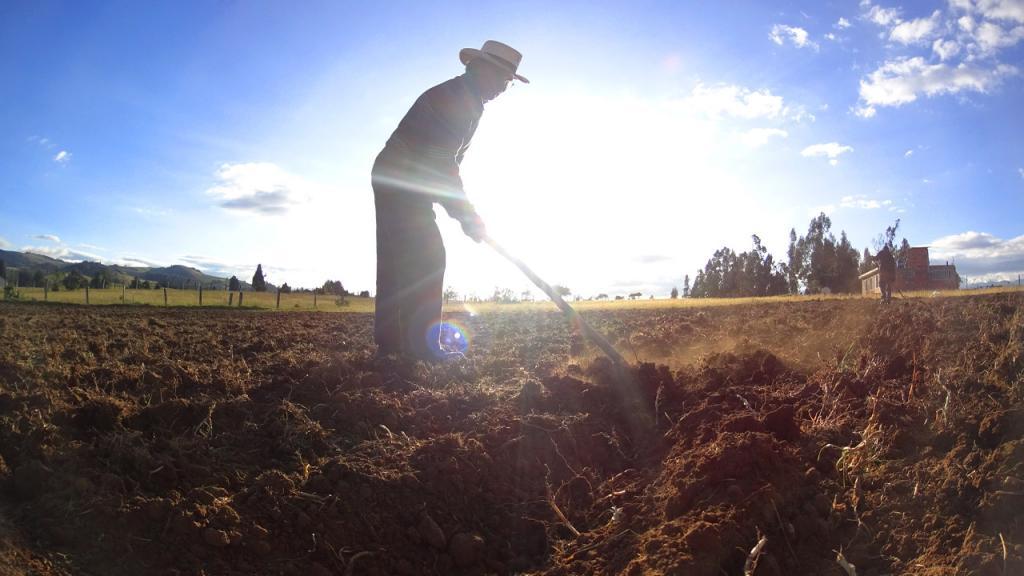 Campesino cultivando la tierra.