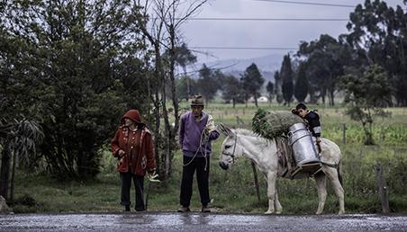 Elca, Colombia, economía, encuesta longitudinal, Susa, Boyacá, vejez, zona rural