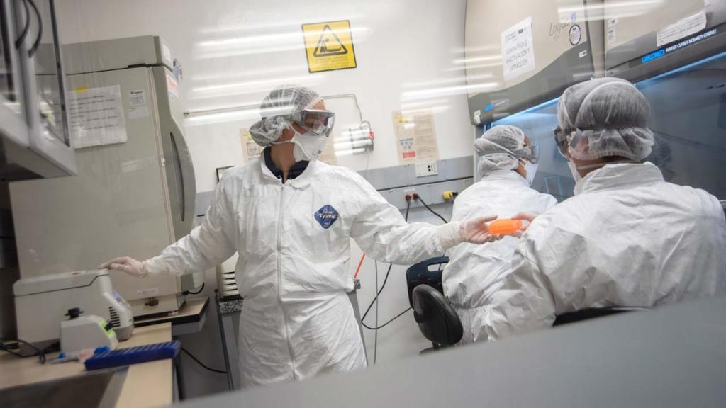 pruebas diagnósticas rápidas coronavirus