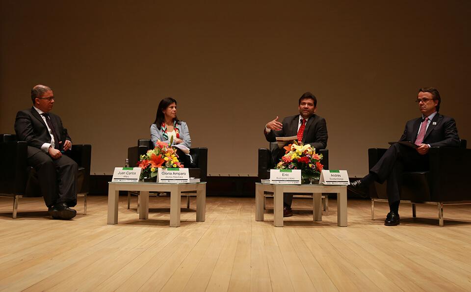 Panel Contaduria Publica
