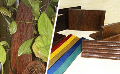 Fotos de la  planta Manicaria saccifera  o cabenegro, nativa del Choco y productos derivados de su fibra.