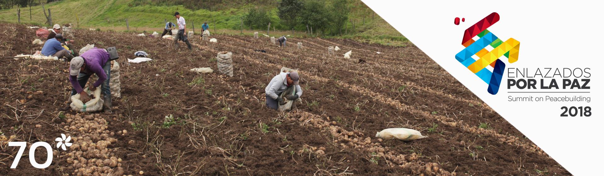 Imagen de campo colombiano