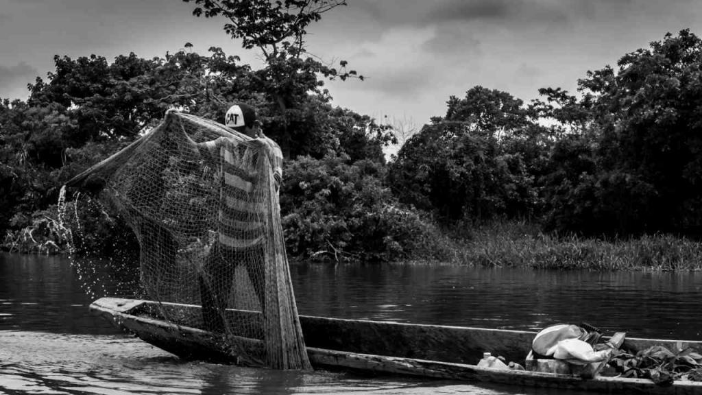 Pescador lanza la red
