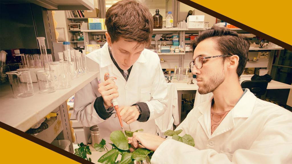 Investigación, una de las claves de la Universidad de los Andes